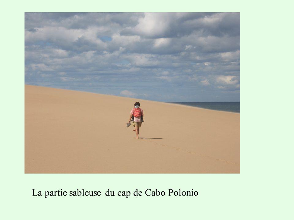 La partie sableuse du cap de Cabo Polonio