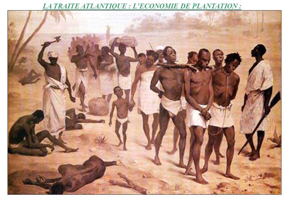 ¥ Quelle est la vie des esclaves dans les plantations .