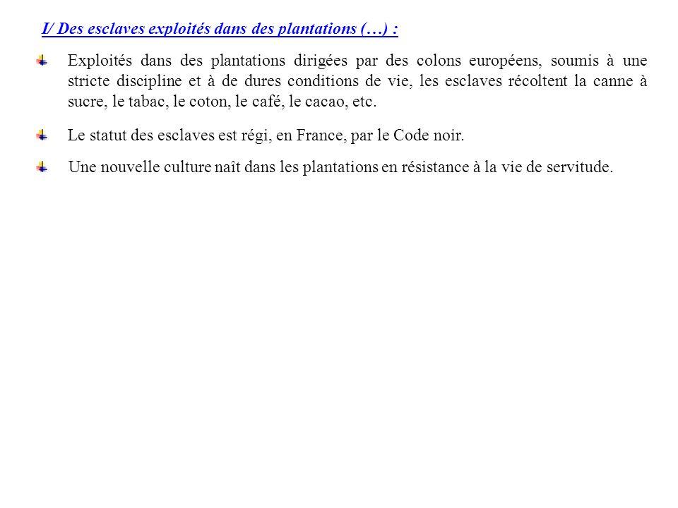 I/ Des esclaves exploités dans des plantations (…) : Exploités dans des plantations dirigées par des colons européens, soumis à une stricte discipline