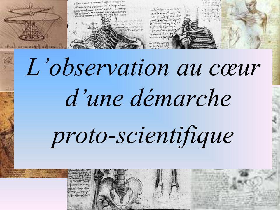 Leonardo Da Vinci: Lobservation au cœur dune démarche proto-scientifique