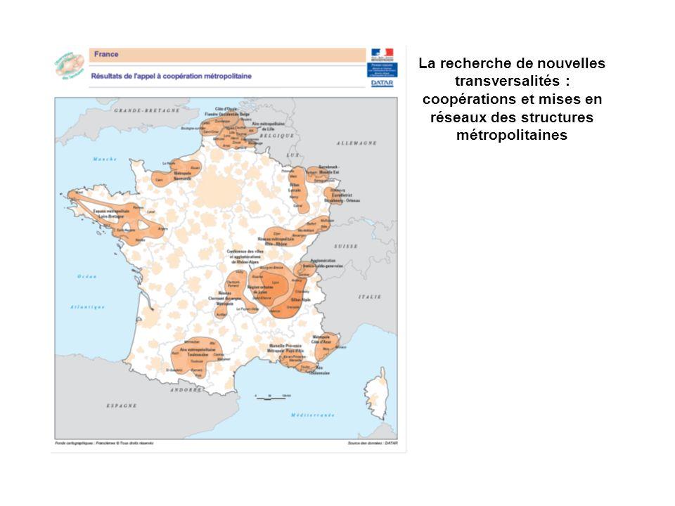 La recherche de nouvelles transversalités : coopérations et mises en réseaux des structures métropolitaines