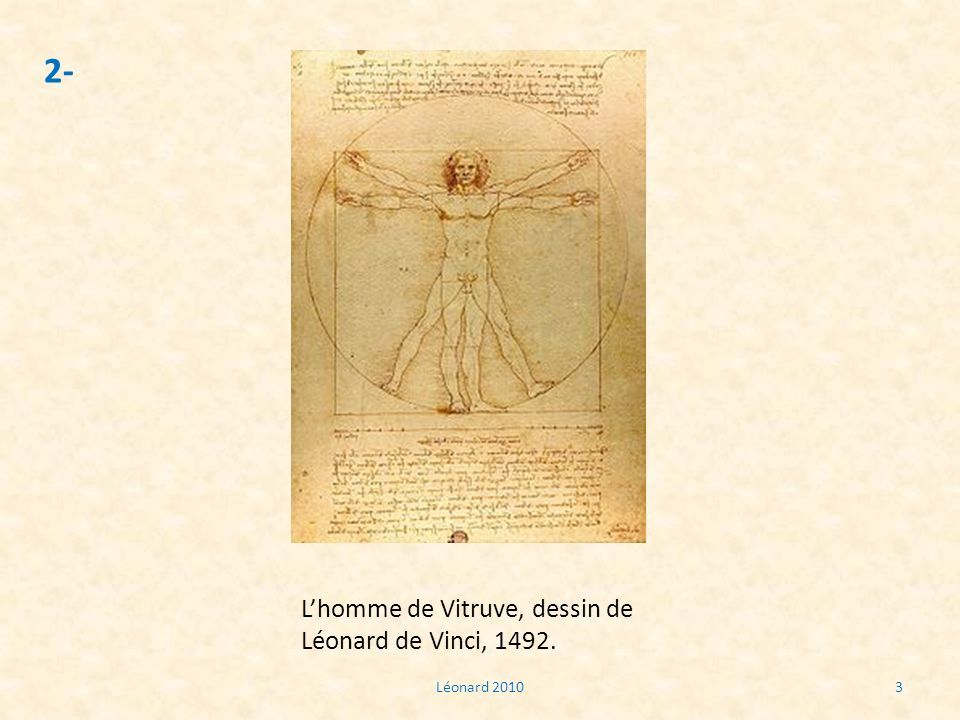 Léonard 20103 2- Lhomme de Vitruve, dessin de Léonard de Vinci, 1492.