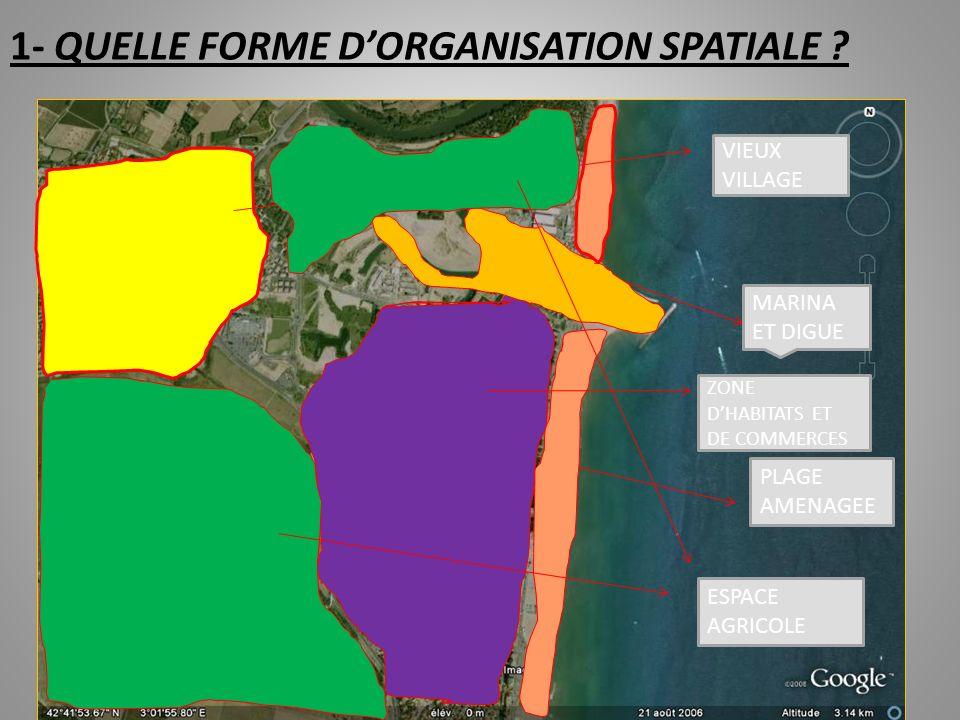 SCHEMA, 1 ERE ETAPE: UNE ORGANISATION SPATIALE STEREOTYPEE
