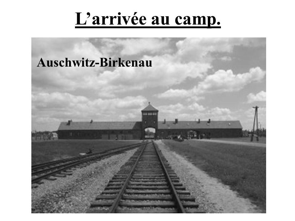 Larrivée au camp. Auschwitz-Birkenau