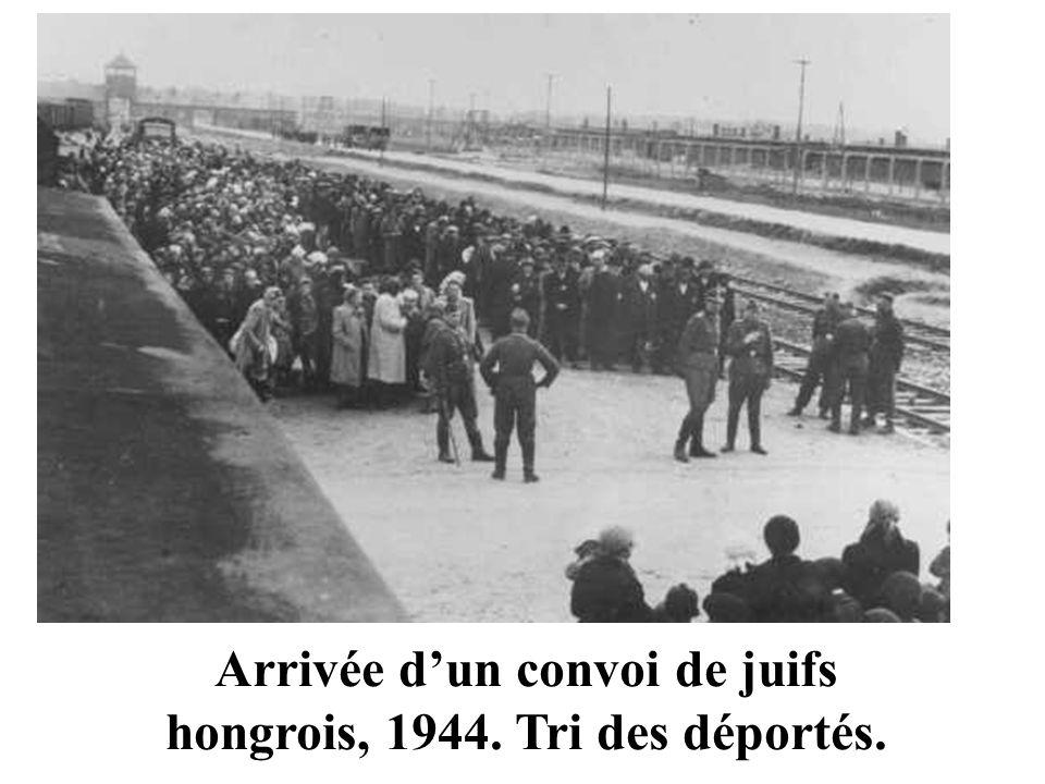 Arrivée dun convoi de juifs hongrois, 1944. Tri des déportés.
