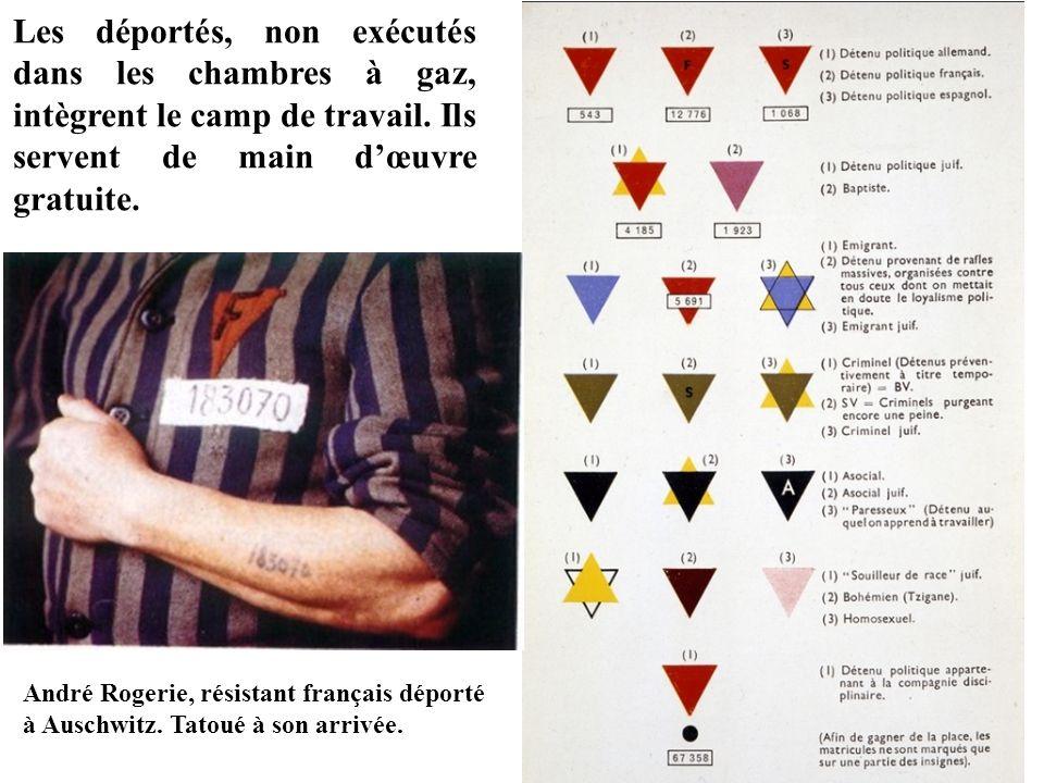 André Rogerie, résistant français déporté à Auschwitz. Tatoué à son arrivée. Les déportés, non exécutés dans les chambres à gaz, intègrent le camp de