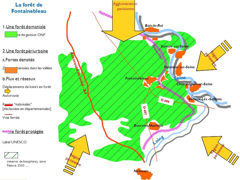 La forêt de Fontainebleau 1.Une forêt domaniale Gestion ONF (exploitation, boisement) 2.Une forêt périurbaine 3.Une forêt protégée Voie ferrée (Francilien) Autoroute du soleil A6 Agglomération parisienne Métropole urbaine de rang mondial Vallées de la Seine et du Loing (forte densité de noyaux urbains) b.Flux et réseaux a.Zones urbanisées proches Déplacements de loisirs en forêt (motivation récréative, sportive, pédagogique …) Région parisienne Voie ferrée Autoroute Schéma de synthèse D 606 D 607 Routes nationales [déclassées en départementales] Label UNESCO (réserve de biosphère), Zone Natura 2000…