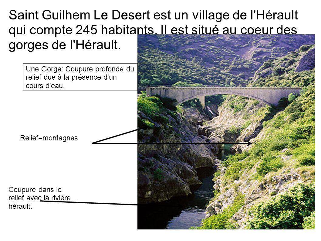 Saint Guilhem Le Desert est un village de l'Hérault qui compte 245 habitants. Il est situé au coeur des gorges de l'Hérault. Une Gorge: Coupure profon