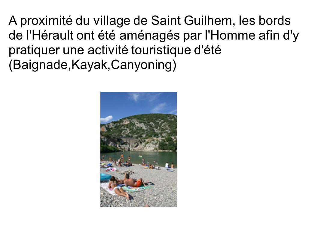 A proximité du village de Saint Guilhem, les bords de l'Hérault ont été aménagés par l'Homme afin d'y pratiquer une activité touristique d'été (Baigna