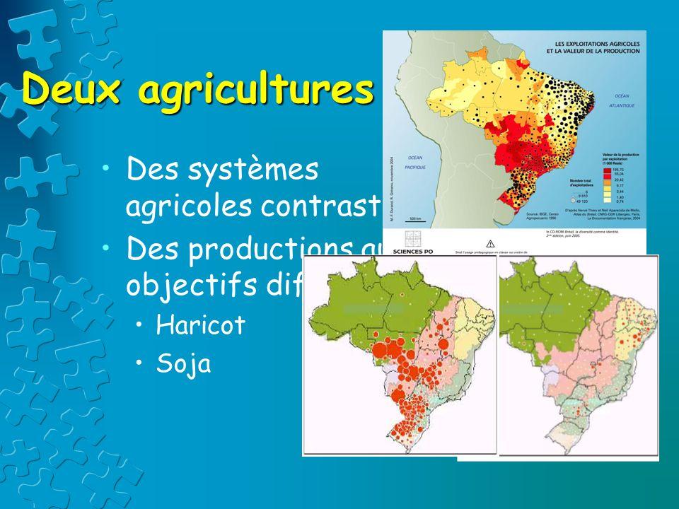Deux agricultures Des systèmes agricoles contrastés Des productions aux objectifs différents Haricot Soja