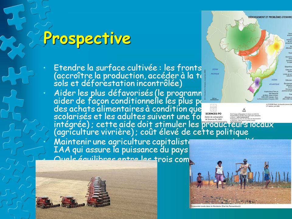 Prospective Etendre la surface cultivée : les fronts pionniers (accroître la production, accéder à la terre, épuiser les sols et déforestation incontr