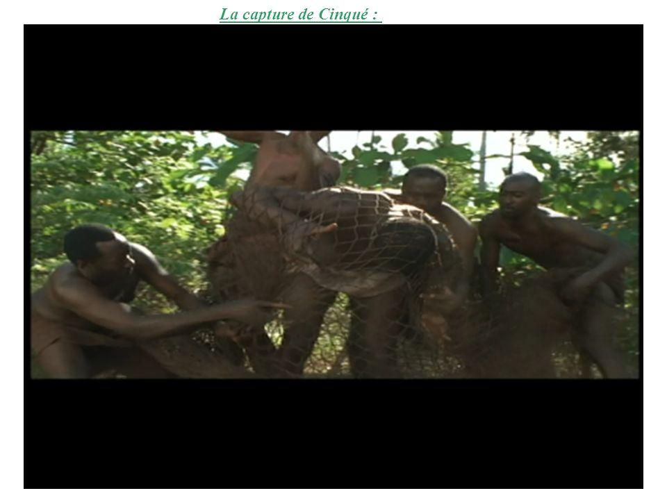 La capture de Cinqué :