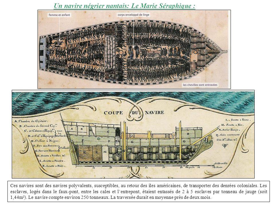 Un navire négrier nantais: Le Marie Séraphique : Ces navires sont des navires polyvalents, susceptibles, au retour des îles américaines, de transporte