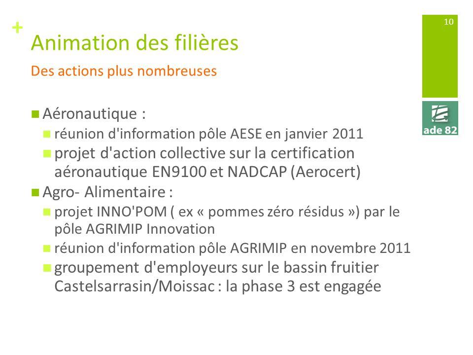 + Animation des filières Aéronautique : réunion d'information pôle AESE en janvier 2011 projet d'action collective sur la certification aéronautique E
