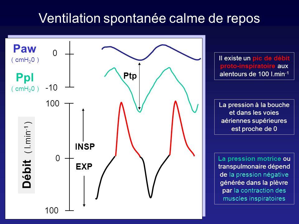 Ventilation entièrement contrôlée Ventilation spontanée calme de repos LES MODES VENTILATOIRES
