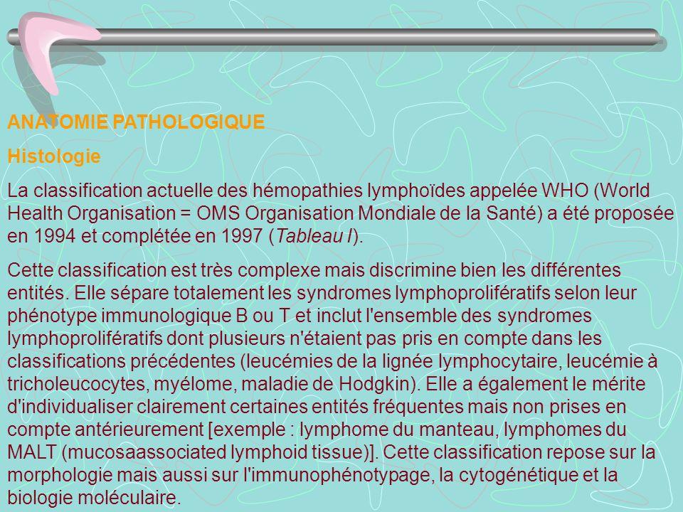 ANATOMIE PATHOLOGIQUE Histologie La classification actuelle des hémopathies lymphoïdes appelée WHO (World Health Organisation = OMS Organisation Mondi