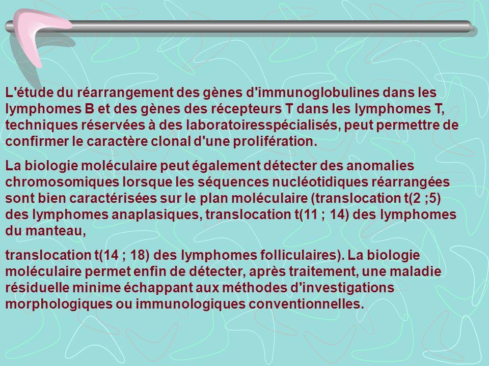 L'étude du réarrangement des gènes d'immunoglobulines dans les lymphomes B et des gènes des récepteurs T dans les lymphomes T, techniques réservées à