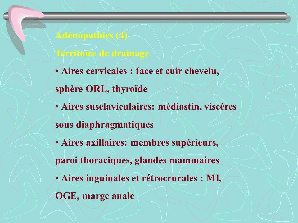 Adénopathies (4) Territoire de drainage Aires cervicales : face et cuir chevelu, sphère ORL, thyroïde Aires susclaviculaires: médiastin, viscères sous