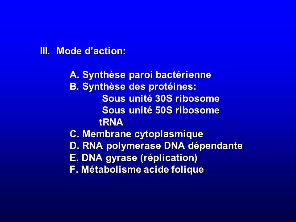 III. Mode daction: A. Synthèse paroi bactérienne B. Synthèse des protéines: Sous unité 30S ribosome Sous unité 50S ribosome tRNA C. Membrane cytoplasm