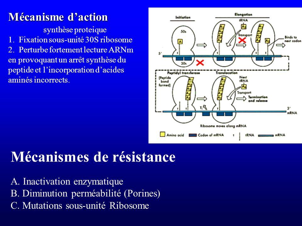 Mécanisme daction A. Inactivation enzymatique B. Diminution perméabilité (Porines) C. Mutations sous-unité Ribosome Mécanismes de résistance Inhibitio