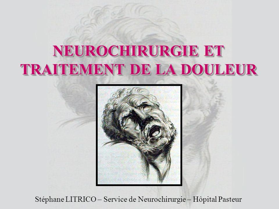 NEUROCHIRURGIE ET TRAITEMENT DE LA DOULEUR Stéphane LITRICO – Service de Neurochirurgie – Hôpital Pasteur