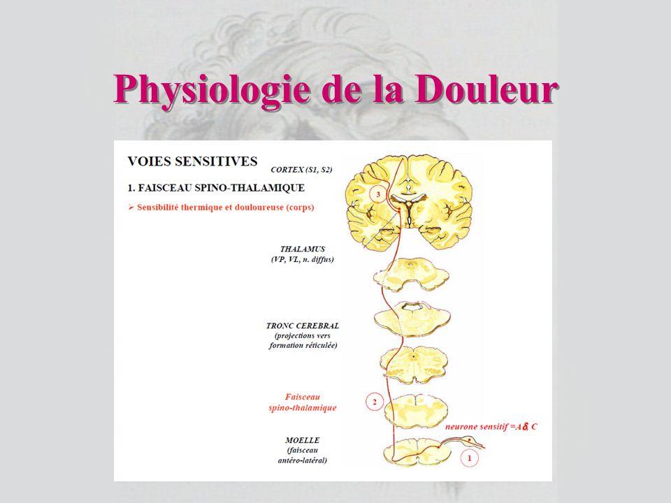 Physiologie de la Douleur