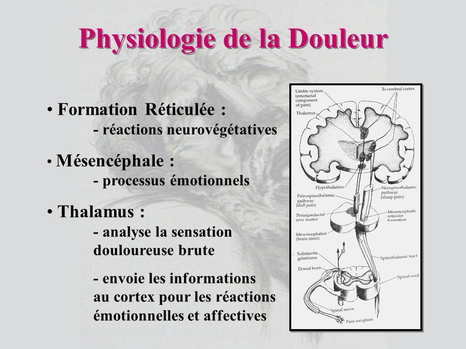 Formation Réticulée : - réactions neurovégétatives Mésencéphale : - processus émotionnels Thalamus : - analyse la sensation douloureuse brute - envoie