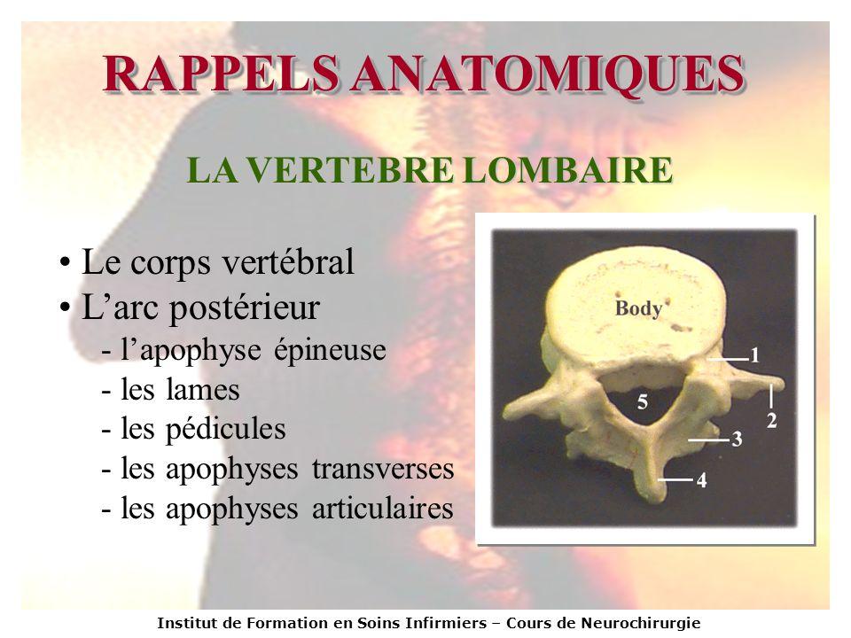 Institut de Formation en Soins Infirmiers – Cours de Neurochirurgie RAPPELS ANATOMIQUES LA VERTEBRE LOMBAIRE