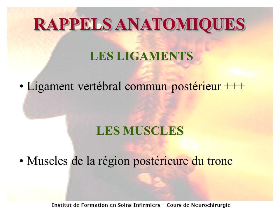 Institut de Formation en Soins Infirmiers – Cours de Neurochirurgie RAPPELS ANATOMIQUES LES LIGAMENTS Ligament vertébral commun postérieur +++ LES MUS