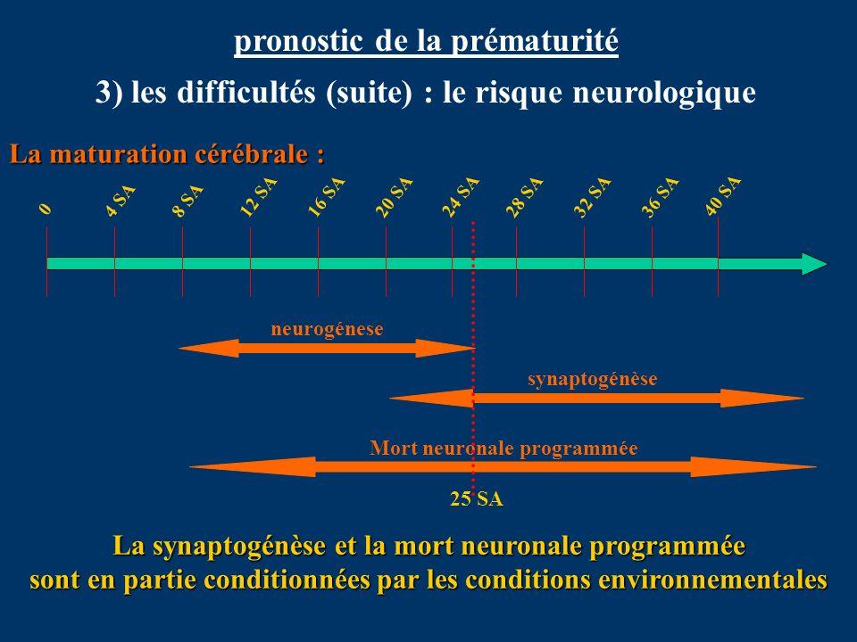 pronostic de la prématurité 3) les difficultés (suite) : le risque neurologique neurogénese synaptogénèse Mort neuronale programmée 0 4 SA8 SA12 SA16
