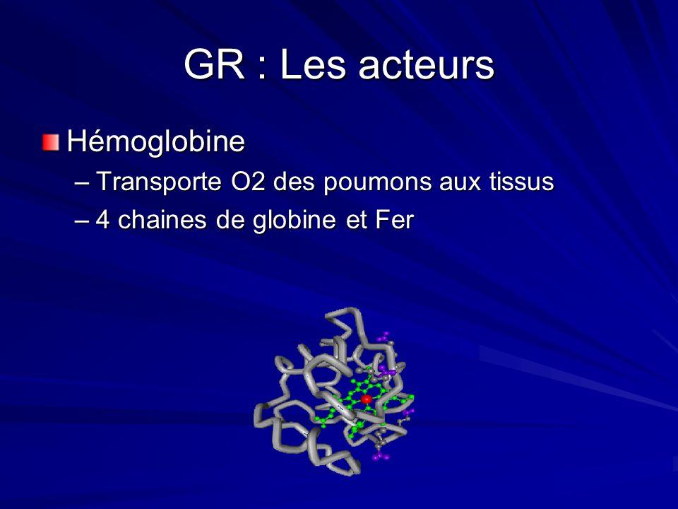 Régulation de lErythropoièse Production: –25 milliards GR /24 heures. –Les réticulocytes sont 1 % des GR. –Erythrocytes vivent 120 jours et sont détru