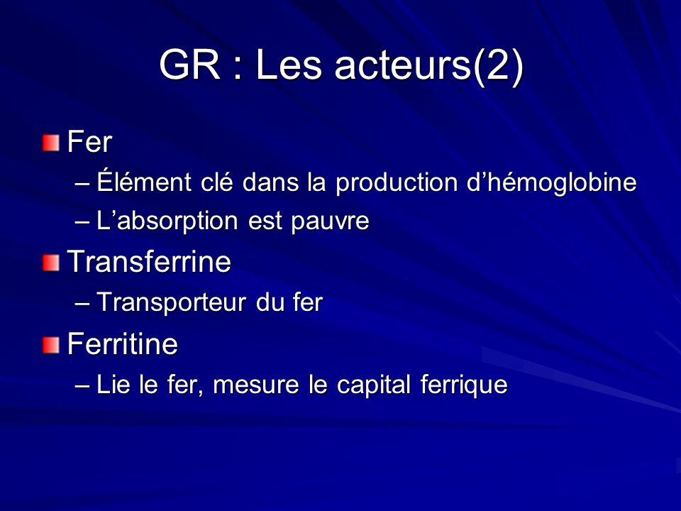 GR : Les acteurs Hémoglobine –Transporte O2 des poumons aux tissus –4 chaines de globine et Fer