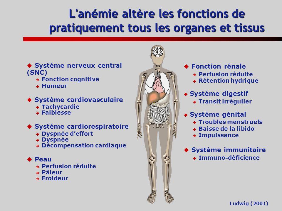 Lanémie dans le cancer Lanémie est fréquente chez les patients cancéreux Lanémie entraîne des dysfonctionnements cardiaques, respiratoires, neurologiq