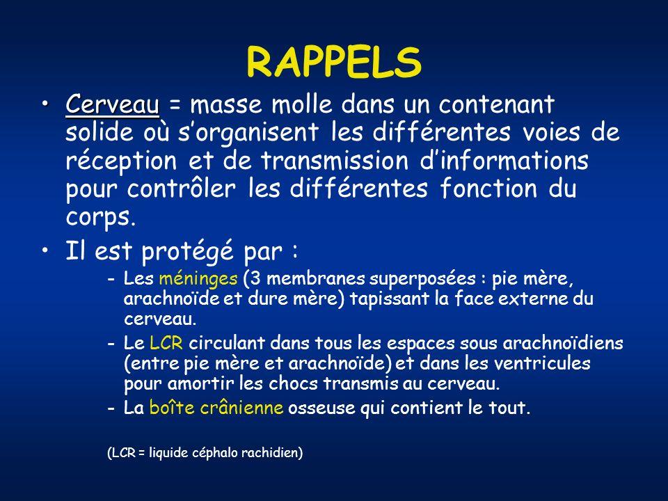 RAPPELS CerveauCerveau = masse molle dans un contenant solide où sorganisent les différentes voies de réception et de transmission dinformations pour contrôler les différentes fonction du corps.