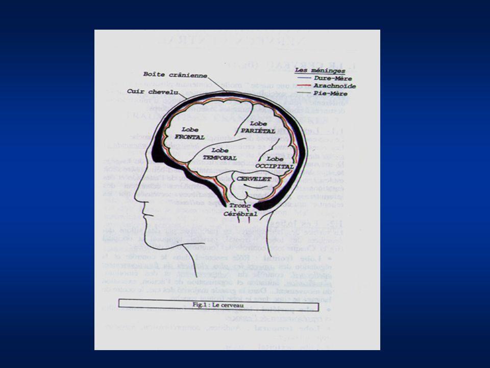 à côté de ces lésions directes cérébrales liées au traumatisme lui- même, il existe des lésions secondaires aggravant le pronostic.