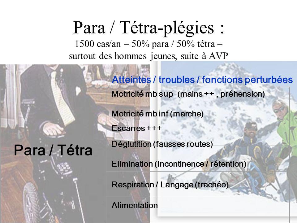 Para / Tétra-plégies : 1500 cas/an – 50% para / 50% tétra – surtout des hommes jeunes, suite à AVP Atteintes / troubles / fonctions perturbées Para /