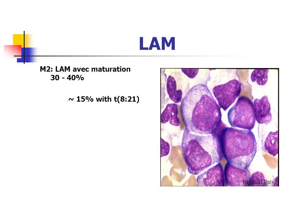 FAB Leucémie aigue myéloide (LAM) 5 à 10 % chez ladulte Antigènes myéloides: CD13, CD33 and CD11b M1 Myéloblastique sans maturation 10 - 20% >90% de c