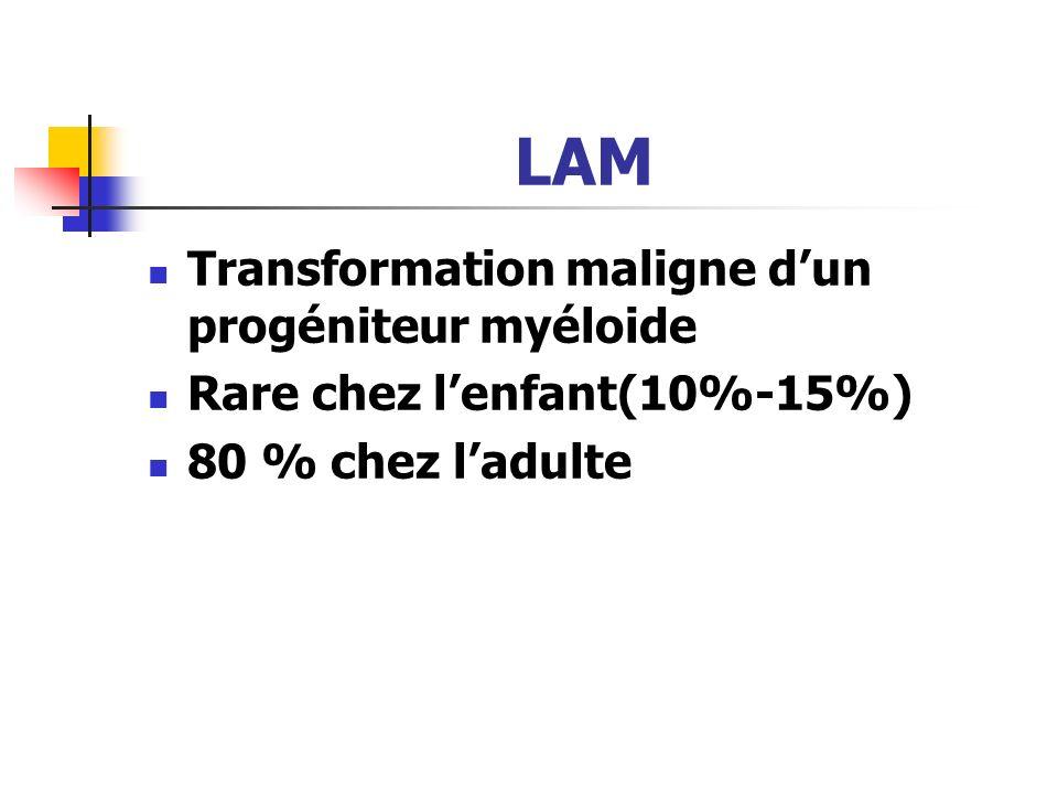 LAM Transformation maligne dun progéniteur myéloide Rare chez lenfant(10%-15%) 80 % chez ladulte