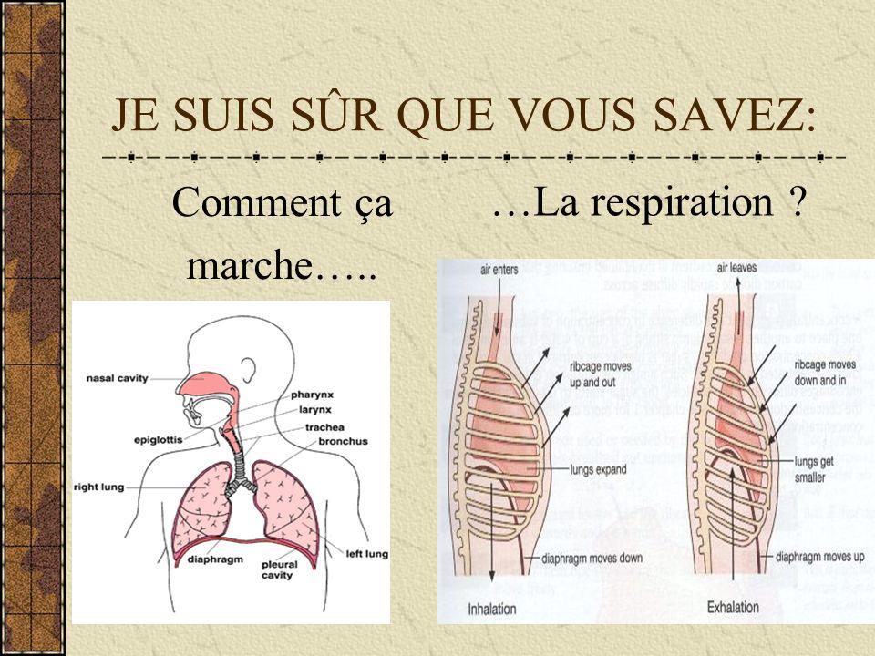 JE SUIS SÛR QUE VOUS SAVEZ: Comment ça marche….. …La respiration ?