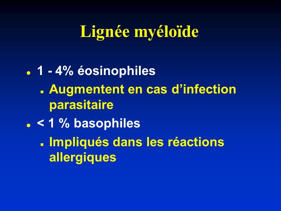 Lignée myéloïde l l 1 - 4% éosinophiles n n Augmentent en cas dinfection parasitaire l l < 1 % basophiles n n Impliqués dans les réactions allergiques