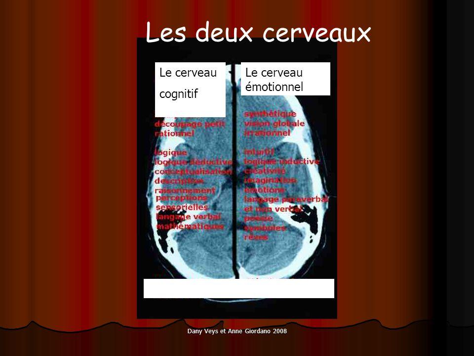 Dany Veys et Anne Giordano 2008 Le cerveau cognitif Le cerveau émotionnel Les deux cerveaux