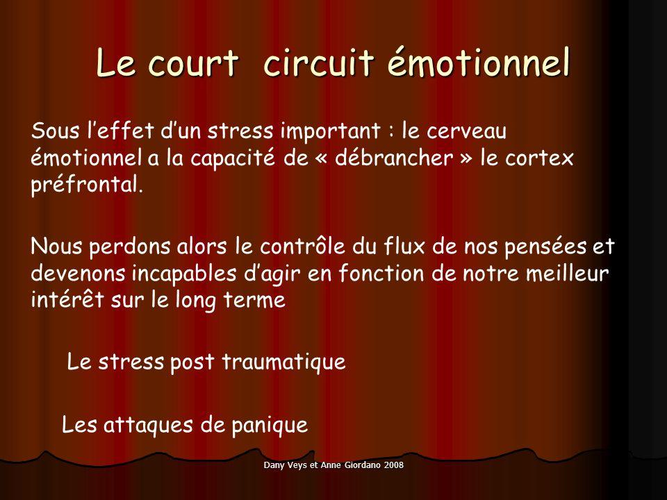 Dany Veys et Anne Giordano 2008 Le court circuit émotionnel Sous leffet dun stress important : le cerveau émotionnel a la capacité de « débrancher » le cortex préfrontal.
