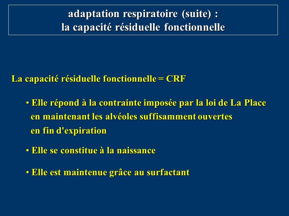 La capacité résiduelle fonctionnelle = CRF Elle répond à la contrainte imposée par la loi de La Place en maintenant les alvéoles suffisamment ouvertes