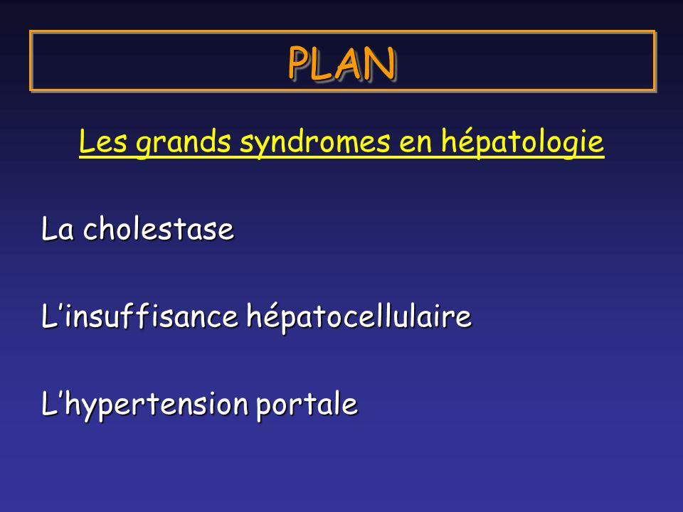 PLANPLAN Les grands syndromes en hépatologie La cholestase Linsuffisance hépatocellulaire Lhypertension portale