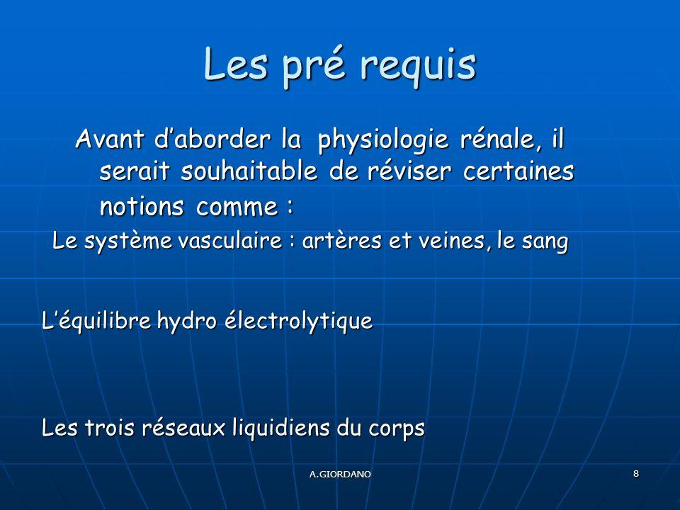 A.GIORDANO 8 Les pré requis Avant daborder la physiologie rénale, il serait souhaitable de réviser certaines notions comme : Les trois réseaux liquidiens du corps Léquilibre hydro électrolytique Le système vasculaire : artères et veines, le sang
