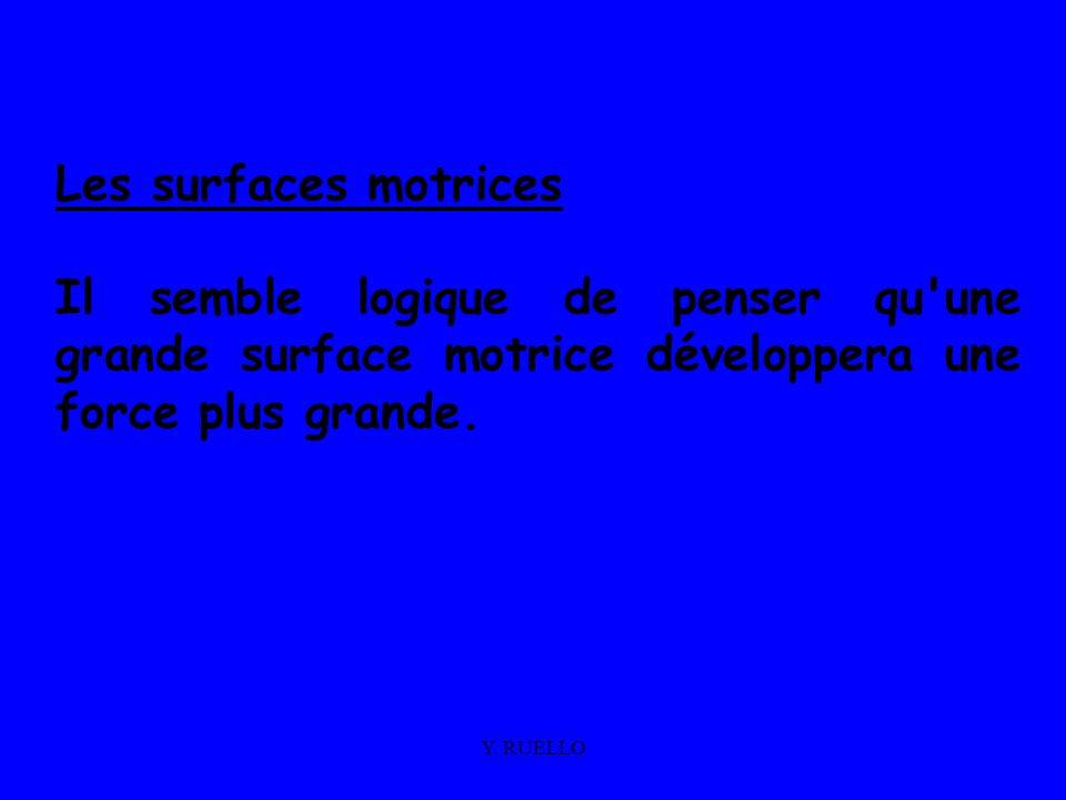 Y. RUELLO Les surfaces motrices Il semble logique de penser qu'une grande surface motrice développera une force plus grande.