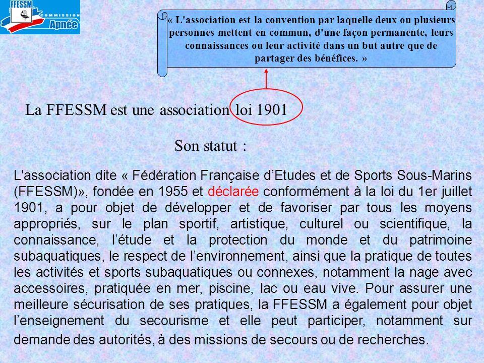 La FFESSM est une association loi 1901 « L'association est la convention par laquelle deux ou plusieurs personnes mettent en commun, d'une façon perma
