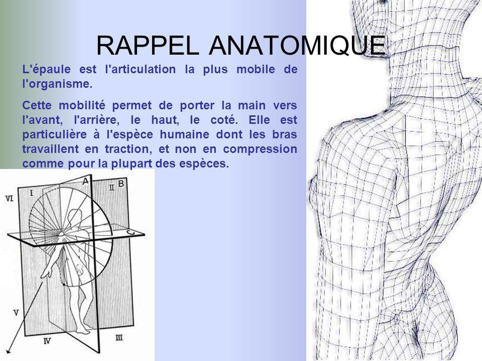 RAPPEL ANATOMIQUE L'épaule est l'articulation la plus mobile de l'organisme. Cette mobilité permet de porter la main vers l'avant, l'arrière, le haut,