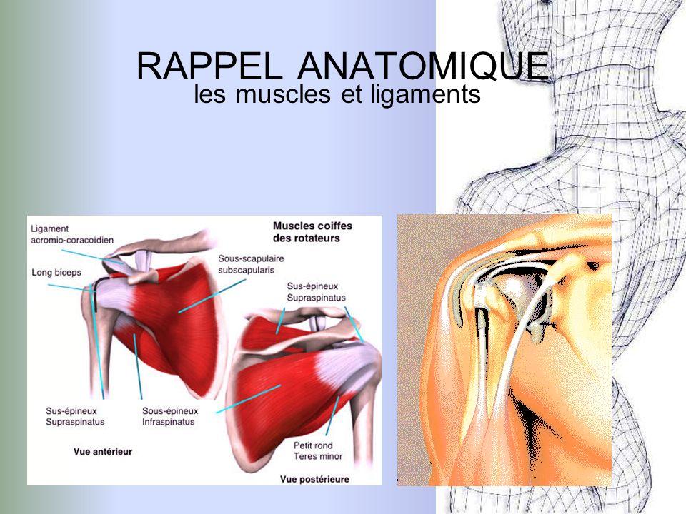 Complication lésion nerveuse fractures associées Les traumatismes de lépaule Luxation antéro -interne