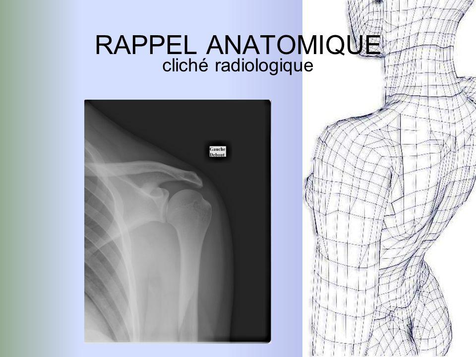 Douleur et impotence fonctionnelle le patient souffrant du membre supérieur adopte une position antalgique dite «position du traumatisé de lépaule » le membre douloureux est maintenu contre le corps par le bras valide.